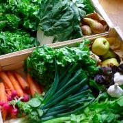 prodotti-agricoli-domicilio-milano