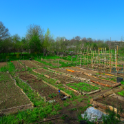 giardino-degli-aromi-milano-affori