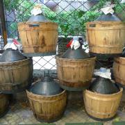 vino-sfuso-milano-porta-venezia-perbacco