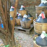 vino-sfuso-milano-porta-venezia-via-pecchio