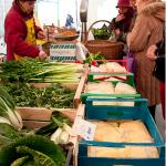 mercato-cascina-cuccagna-milano-mercato-produttori-chilometro-zero-verdure2