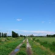 parco_della_vettabbia