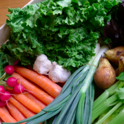 verdure-domicilio-milano