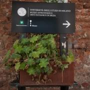 orto-botanico-brera-museo-astronomico
