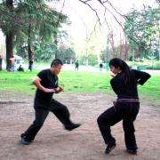 tai-chi-milano-parco-sempione5