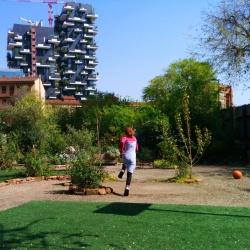 Isola Pepe Verde: un angolo verde tra i palazzoni