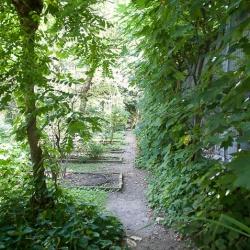 Orto botanico di Brera: una sorpresa in centro