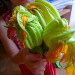 Adotta un orto a distanza e ricevi le verdure a casa