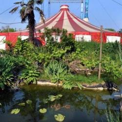 Una Piccola Scuola di Circo in città