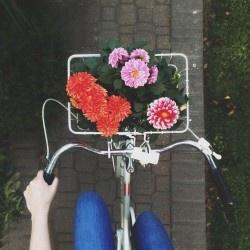 Sfidiamo il caldo: in bici da Milano a Monza + guerrilla gardening