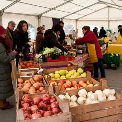 mercato-cascina-cuccagna-milano-mercato-produttori-chilometro-zero-frutta
